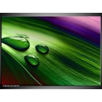 Glas schilderij Druppel | Groen, Wit, Paars