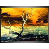 Glas schilderij Natuur | Geel, Bruin, Wit