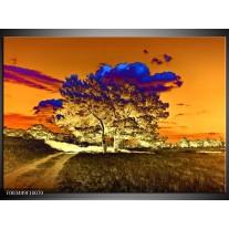 Glas schilderij Natuur | Oranje, Blauw, Geel