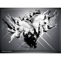 Glas schilderij Abstract | Wit, Zwart, Grijs