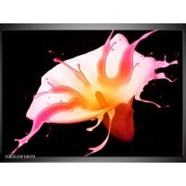 Foto canvas schilderij Bloem | Roze, Geel, Oranje