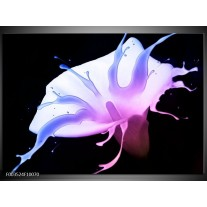 Foto canvas schilderij Bloem | Paars, Blauw, Zwart