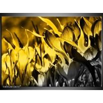 Glas schilderij Bloem | Geel, Grijs, Zwart