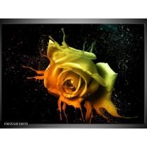 Glas schilderij Roos | Oranje, Geel, Groen
