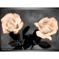 Glas schilderij Roos | Sepia, Zwart