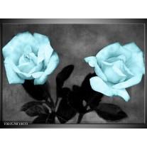 Foto canvas schilderij Roos | Blauw, Grijs, Zwart