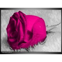 Glas schilderij Roos | Roze, Grijs