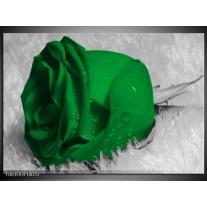 Glas schilderij Roos | Groen, Grijs, Zwart