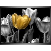 Foto canvas schilderij Tulp | Goud, Zilver, Grijs
