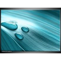 Foto canvas schilderij Macro | Blauw, Wit, Zwart