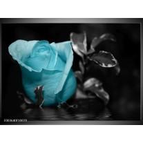 Glas schilderij Roos | Blauw, Grijs, Zwart