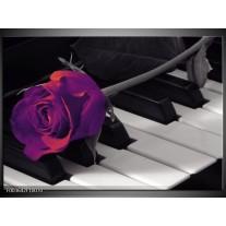 Glas schilderij Roos | Paars, Zwart, Wit