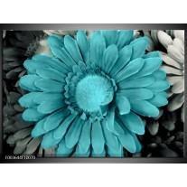 Glas schilderij Gerbera | Blauw, Grijs