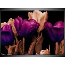 Foto canvas schilderij Tulp | Paars, Bruin, Zwart