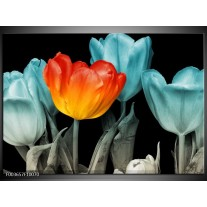 Foto canvas schilderij Tulp | Oranje, Blauw, Zwart