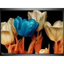 Glas schilderij Tulp | Blauw, Oranje, Zwart