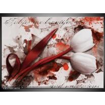 Foto canvas schilderij Tulp | Rood, Wit, Bruin