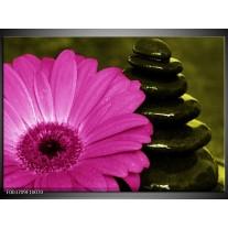 Glas schilderij Bloem | Roze, Zwart, Groen