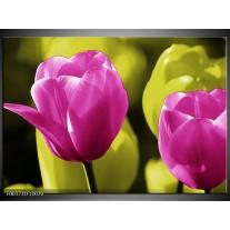 Foto canvas schilderij Tulp | Roze, Groen, Zwart