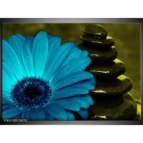Foto canvas schilderij Bloem   Blauw, Zwart, Groen
