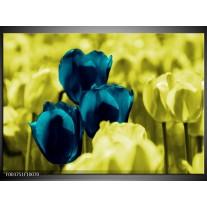 Foto canvas schilderij Tulp   Blauw, Zwart, Groen