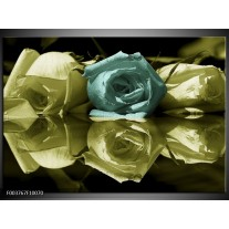 Glas schilderij Roos | Blauw, Zwart, Groen