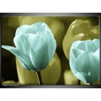 Glas schilderij Tulp   Blauw, Zwart, Groen
