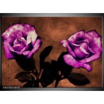 Foto canvas schilderij Roos | Paars, Bruin, Wit