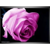 Glas schilderij Roos | Roze, Wit, Zwart