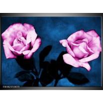 Glas schilderij Roos | Roze, Blauw, Zwart