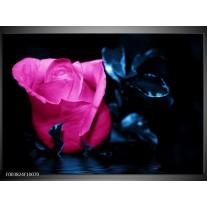 Foto canvas schilderij Roos | Roze, Blauw, Zwart