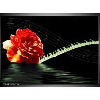 Foto canvas schilderij Roos | Oranje, Groen, Zwart