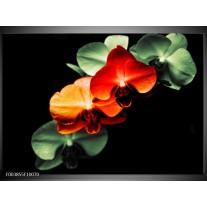 Glas schilderij Orchidee | Rood, Groen, Zwart