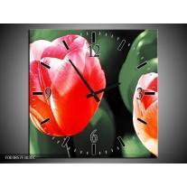Wandklok op Canvas Tulp | Kleur: Rood, Groen, Wit | F003857C