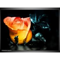 Foto canvas schilderij Roos | Geel, Oranje, Zwart