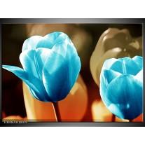 Foto canvas schilderij Tulp | Blauw, Oranje, Bruin