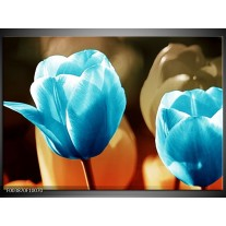 Glas schilderij Tulp | Blauw, Oranje, Bruin