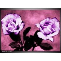 Foto canvas schilderij Roos | Paars, Wit, Zwart