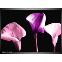 Foto canvas schilderij Bloem | Paars, Wit, Zwart