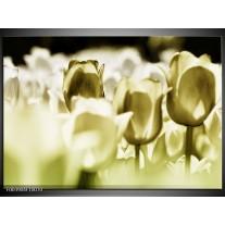 Glas schilderij Tulp | Groen, Grijs
