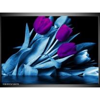 Glas schilderij Tulp | Paars, Blauw, Zwart