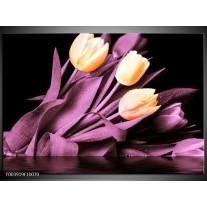 Glas schilderij Tulp | Oranje, Paars, Zwart