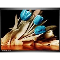 Glas schilderij Tulp | Blauw, Zwart, Bruin
