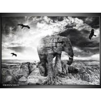 Glas schilderij Olifant | Grijs, Zwart, Wit