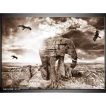 Glas schilderij Olifant | Grijs, Wit