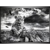 Glas schilderij Natuur | Grijs, Wit, Zwart