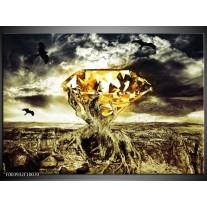 Foto canvas schilderij Steen | Geel, Groen, Grijs