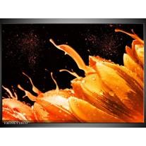 Foto canvas schilderij Tulp | Oranje, Zwart