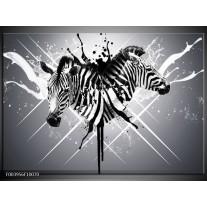 Glas schilderij Zebra | Zwart, Wit, Grijs