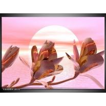 Glas schilderij Bloem | Roze, Paars, Wit
